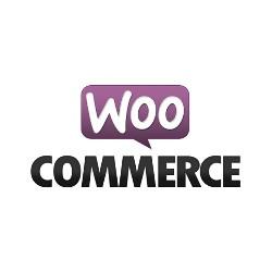 WooCommerce Sprachdateien manuell installieren