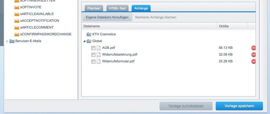 Shopware 5 Konfiguration - PDF Anhang